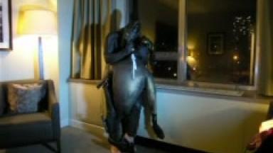 frogman hotel window attack